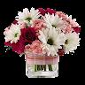 Flores brancas e a