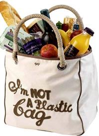 notaplasticbag_final