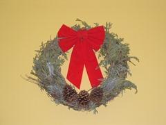 Christmas 2009 002