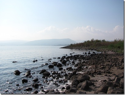 Sea of Galilee Shoreline 2