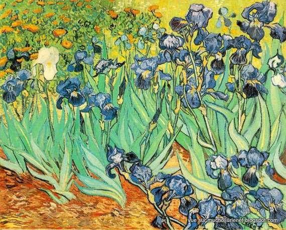 Iris de Vincent van Gogh
