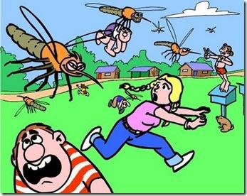 premio consuelo mosquitos