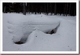 Snowshoeing-38