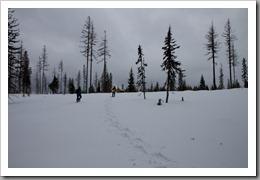 Snowshoeing-42