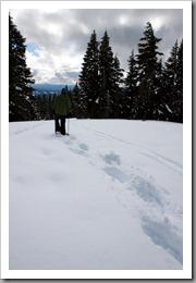 Mt Hood Snowshoeing-55