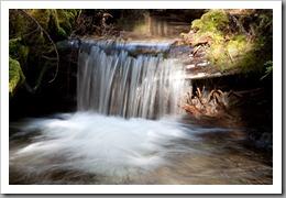 Mt Hood Ramona Falls-135