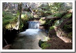Mt Hood Ramona Falls-136