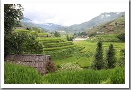 20090805_vietnam_0067