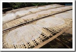 20090814_vietnam_0130