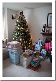 Nguyen Christmas-12