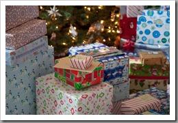 Nguyen Christmas-16