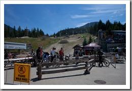 Whistler Day 1-9