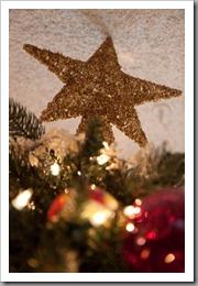 Christmas Tree-14