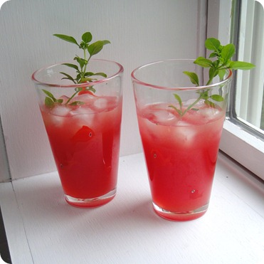 Watermelon Margarita: The most delicious drink in the world.