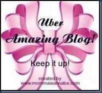 amazingblog[1]