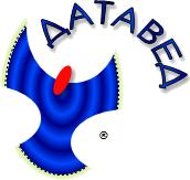 Логотип Датаведа