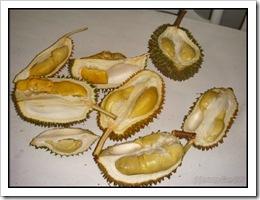 Durian-MYFH_20090630_2744-480