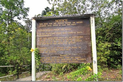 Semengoh Orangutan Rehabilitation Center 23