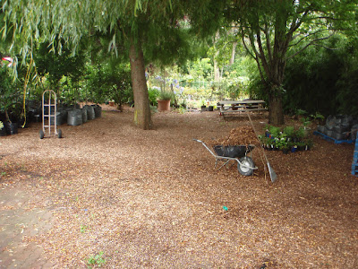 The outdoor classroom area