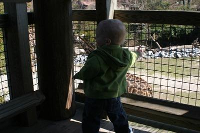 Virginia Zoo - 18