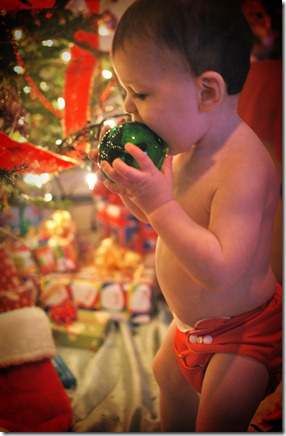 Ornament eating