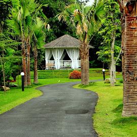 by Zulfikar Achmad - Nature Up Close Gardens & Produce