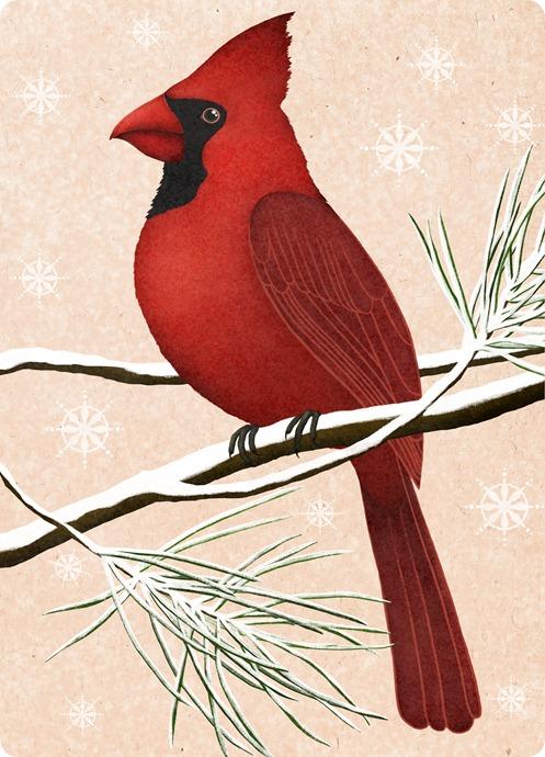 красный кардинал рождество