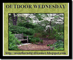 OutdoorWednesdaylogo5454[4]