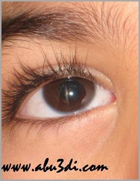 عيون القلب
