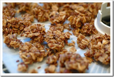 raw-maple-granola