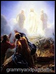 min-transfiguration-on-the-mountain