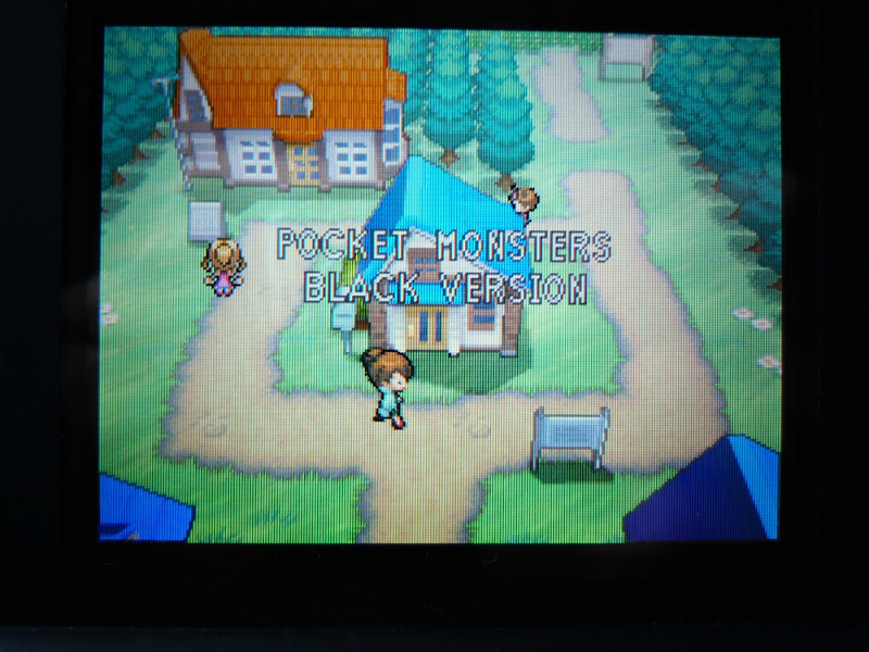 Pokemon Black White ポケモン ブラック ホワイト DS Nintendo Game Freak