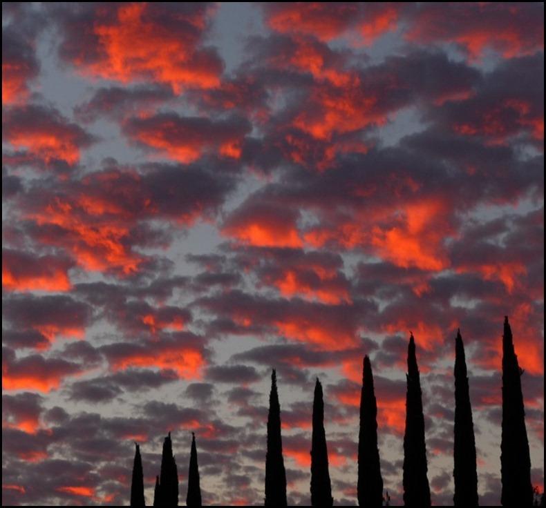 sunrise 002 (800x600)