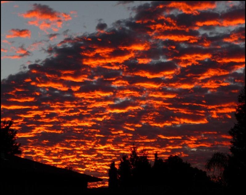 sunrise 003 (800x600)