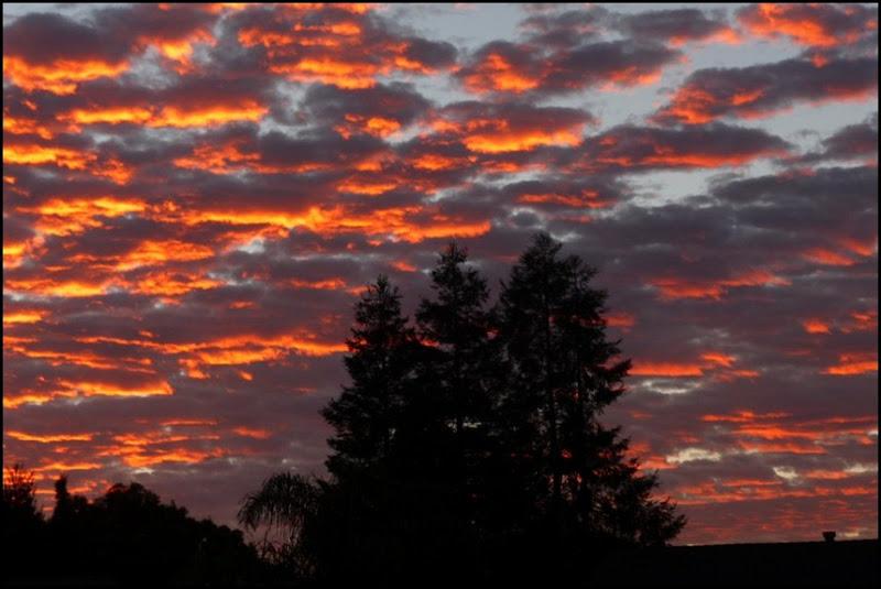 sunrise 009 (800x600)