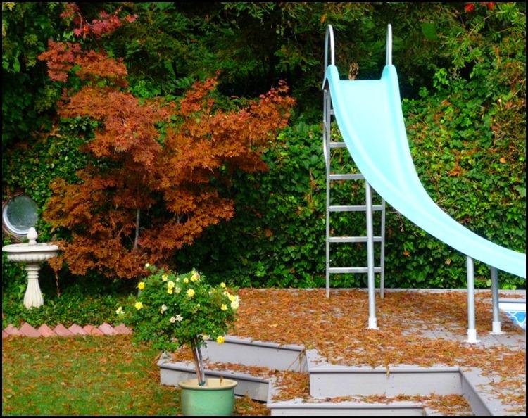 fall leaves 003 (800x600)