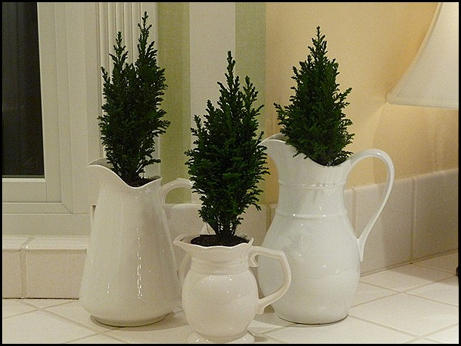 Blog Christmas 2010 040 (800x600)
