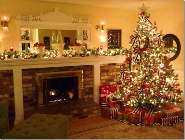 Blog Christmas 2010 015 (800x606)