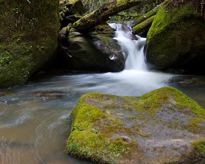 Timms Creek