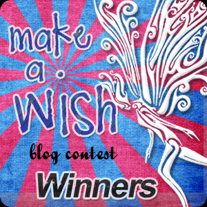 Make a Wish winners