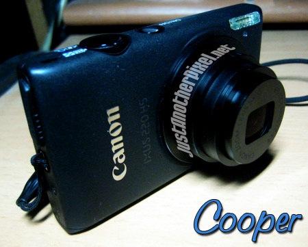 Cooper, my new baby - Canon IXUS 220 HS - JustAnotherPixel.net