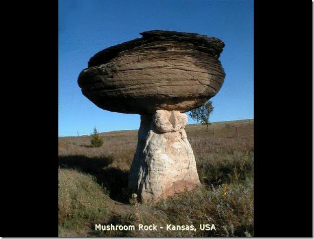 Pedra 16