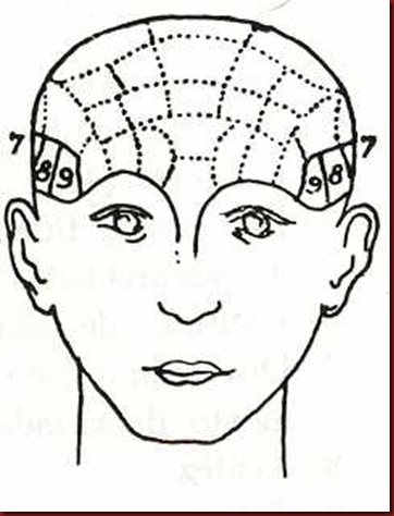 Craniologia 03