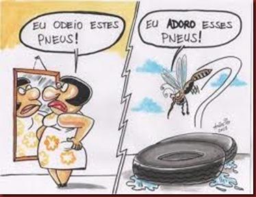 Enem Dengue Mosquito