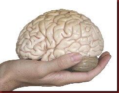 Enem lavagem cerebral