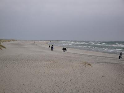 La arena y el viento... grandes enemigos