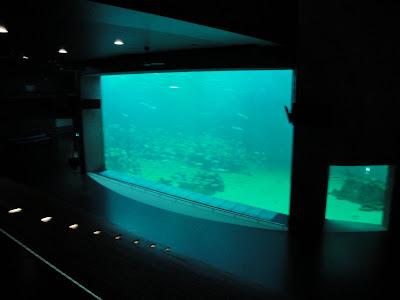 El Oceanarium