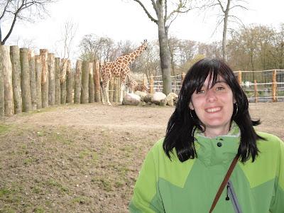 También había jirafas, muy elegantes ellas
