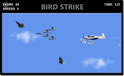bird strike 1
