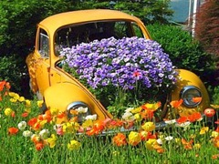auto_ecologica--400x300